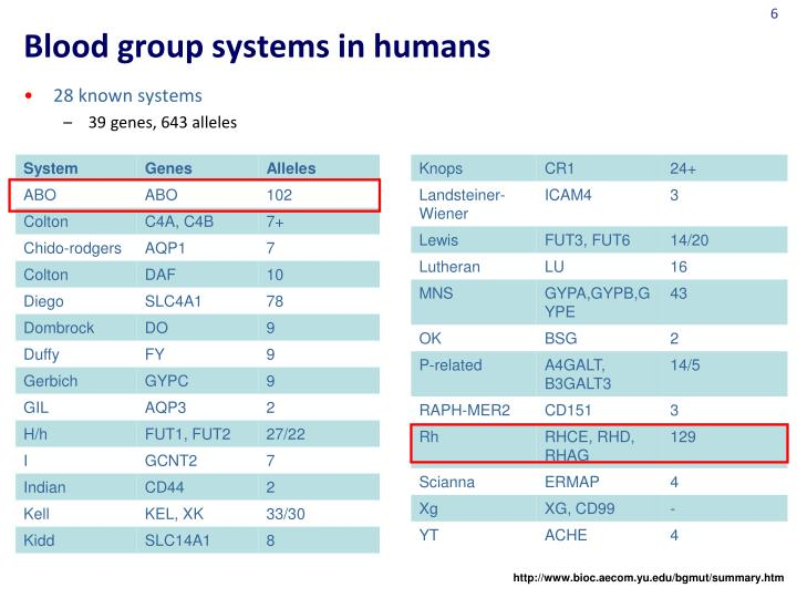 Group Systems Human Blood
