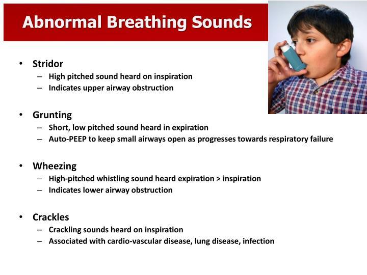 PPT - Pediatric Respiratory Emergencies PowerPoint ...
