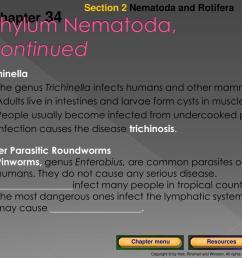 section 2 nematoda and rotifera chapter  [ 1024 x 768 Pixel ]