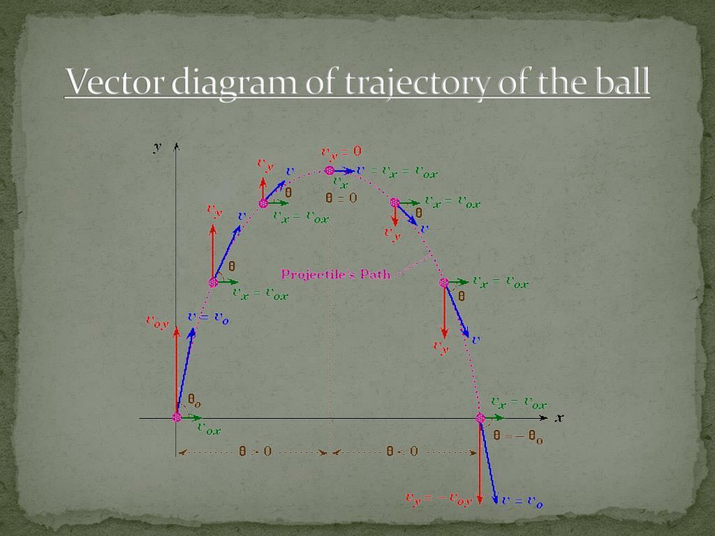 Medieval Catapult Diagram Labeled Trebuchet Physics
