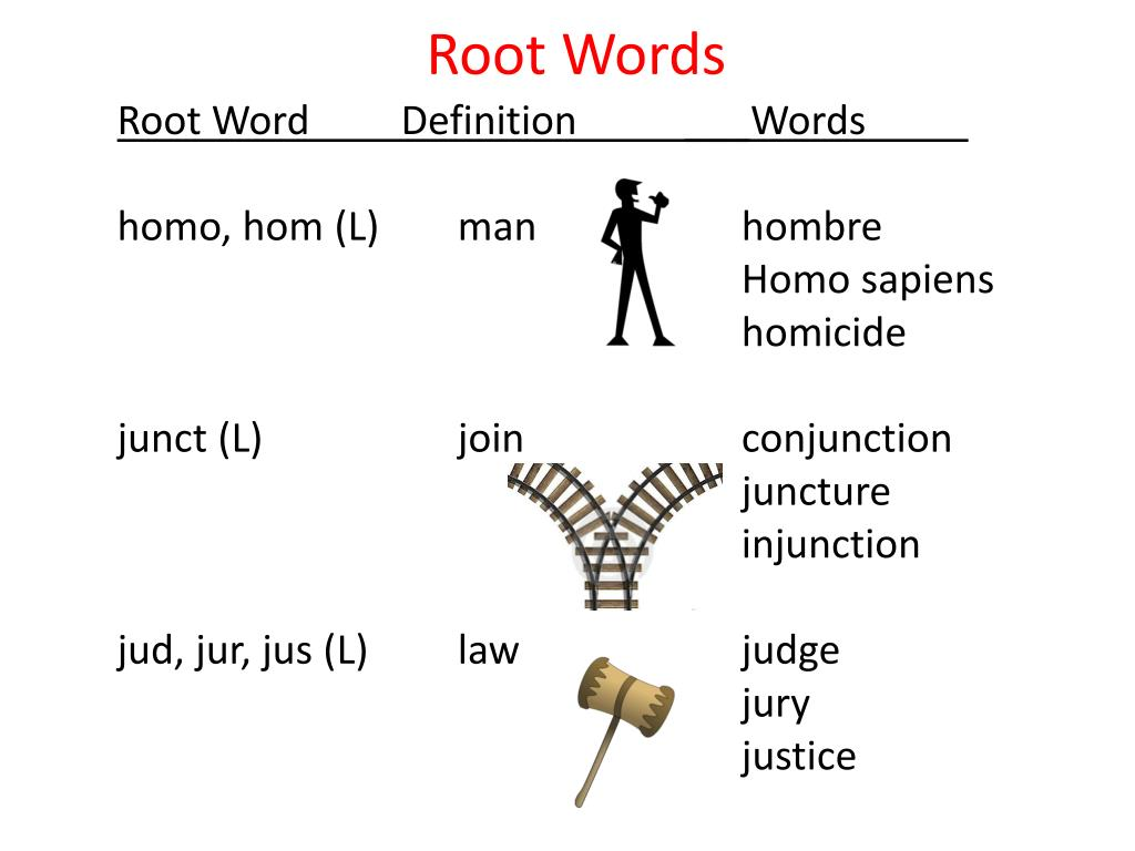 Logo Root Word Definition