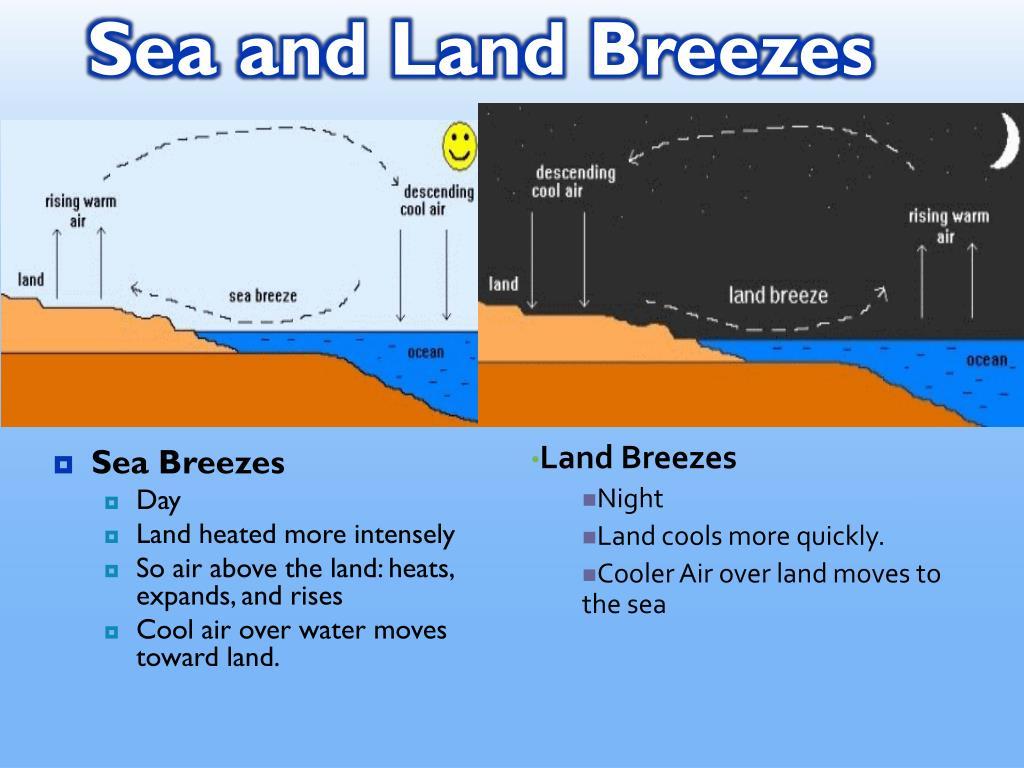 Sea Breeze Diagram Labeled
