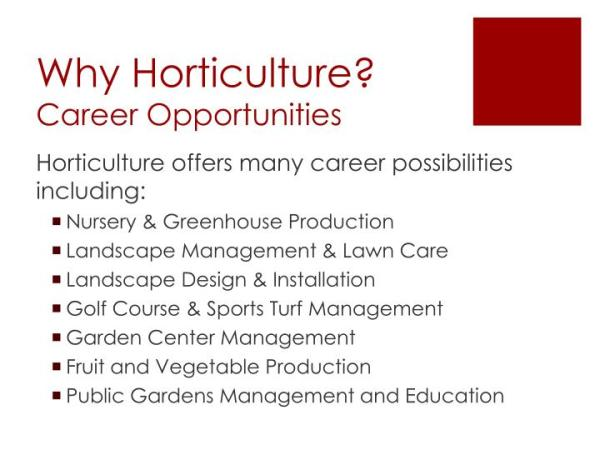 ppt - horticulture powerpoint presentation