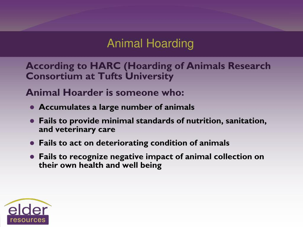PPT - Definition of Hoarding* PowerPoint Presentation ...