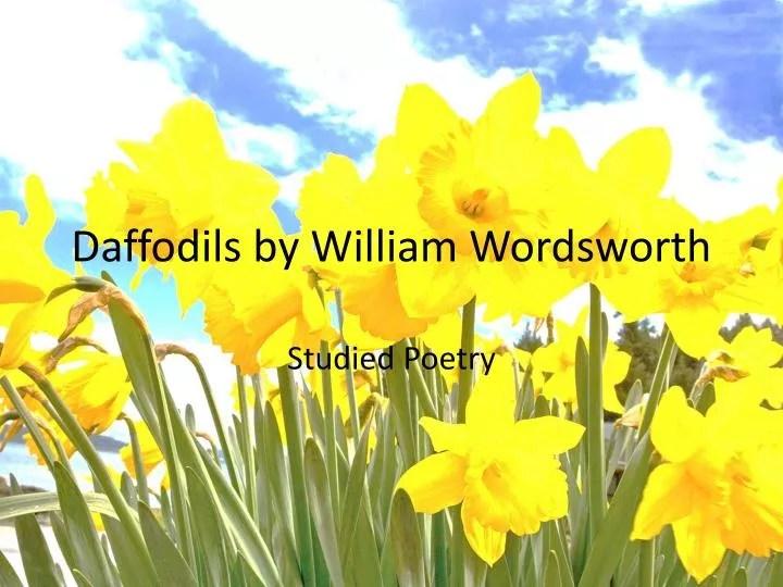 PPT Daffodils By William Wordsworth PowerPoint Presentation ID2333602