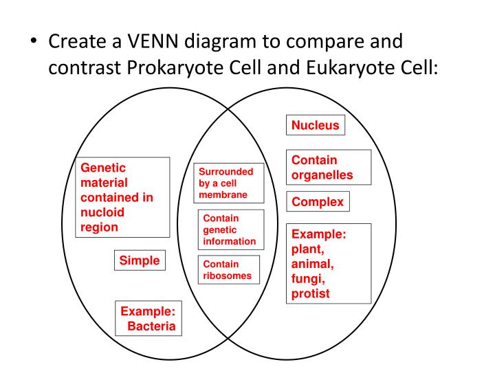 create a venn diagram comparing osmosis and diffusion kenmore elite dryer heating element wiring ppt cell structure review powerpoint presentation id 2344527 to compare contrast prokaryote
