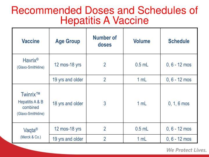 PPT - Adolescent and Adult Immunization Update PowerPoint ...