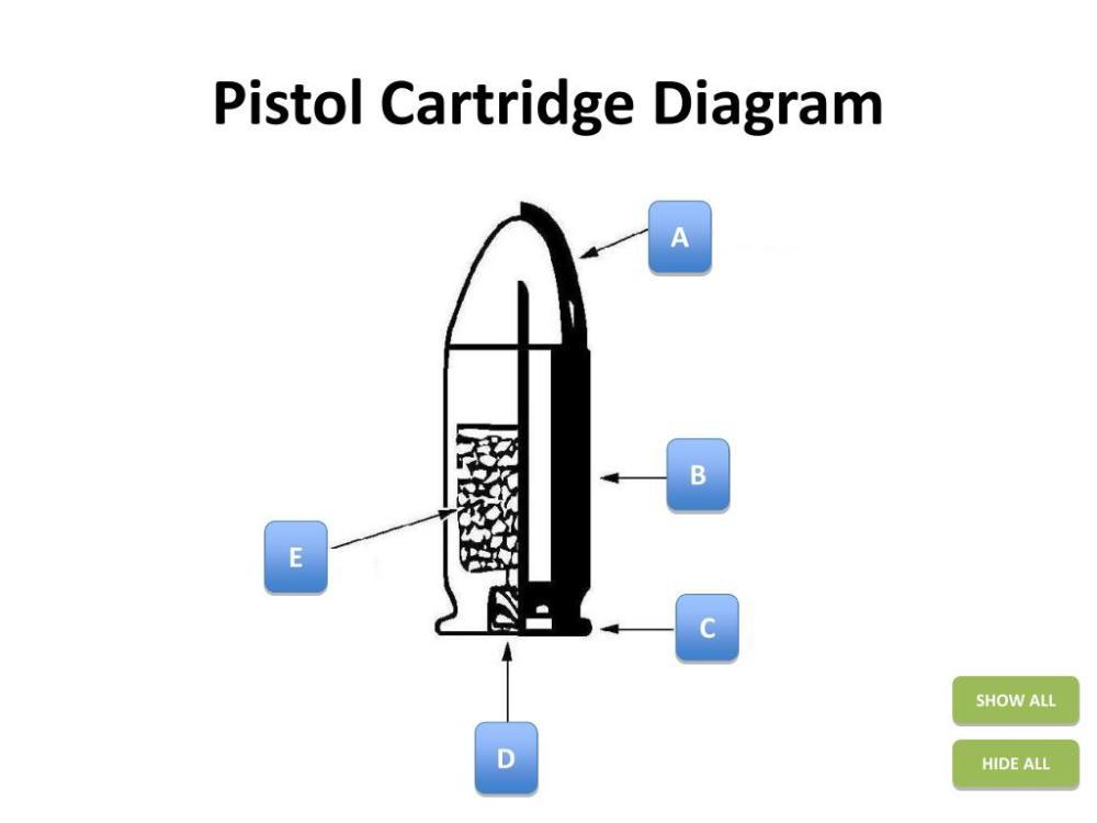 medium resolution of bullet cartridge diagram