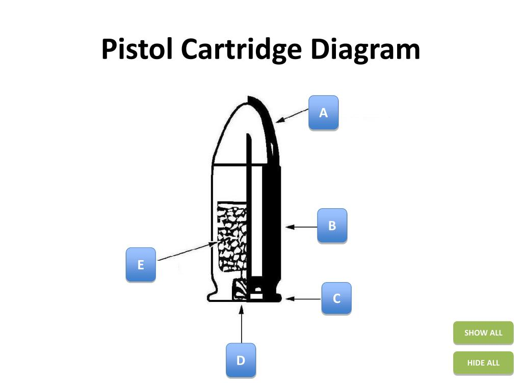 hight resolution of bullet cartridge diagram