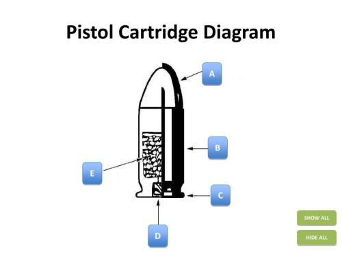 small resolution of bullet cartridge diagram