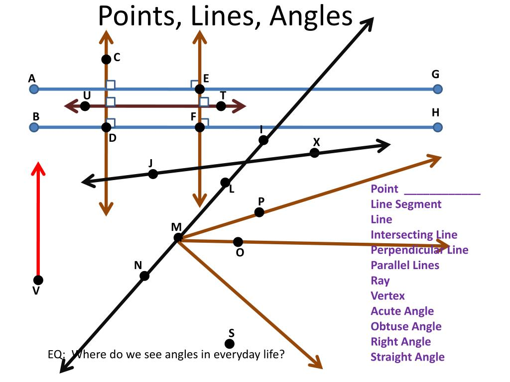 hight resolution of Angles and lines unit test edgenuity