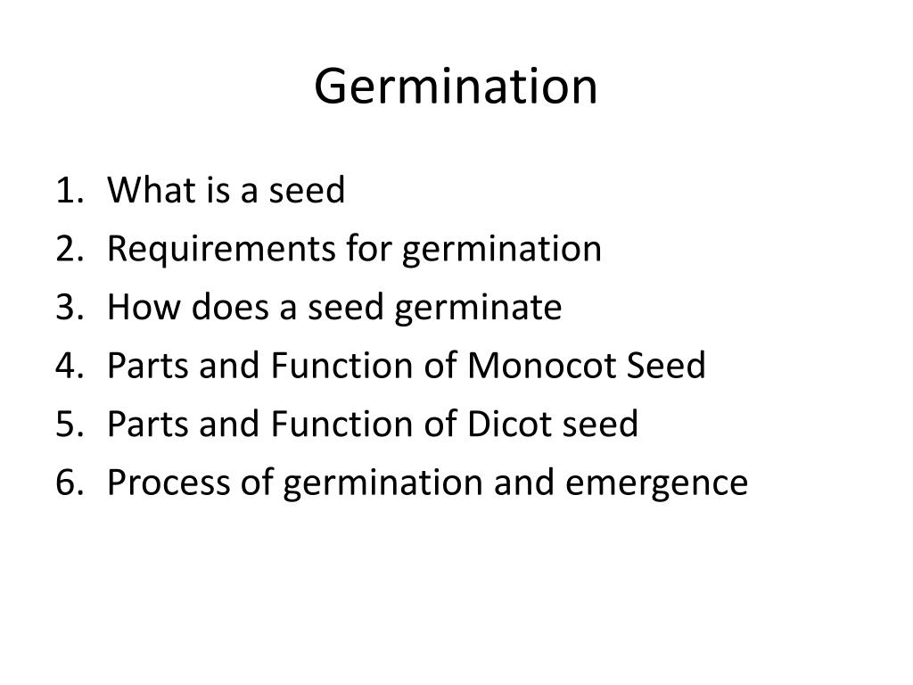 hight resolution of germination what is a seed requirements for germination how does a seed germinate parts and function of monocot seed parts and function of dicot