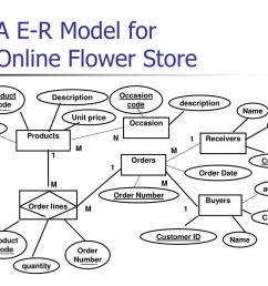a e r model for online flower store n  [ 1024 x 768 Pixel ]