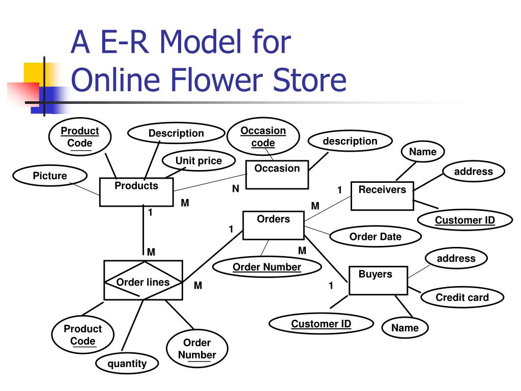 hight resolution of a e r model for online flower store n