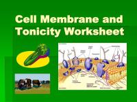PPT - Cell Membrane and Tonicity Worksheet PowerPoint ...