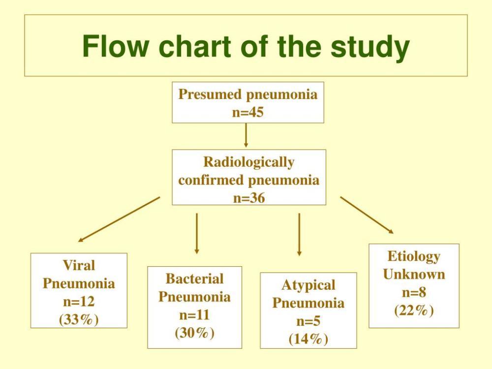 medium resolution of pneumonia flow diagram wiring diagram yer pneumonia flow diagram
