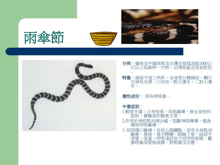 PPT - 簡易急救法 【 咬傷的緊急處理 】 PowerPoint Presentation - ID:3561723