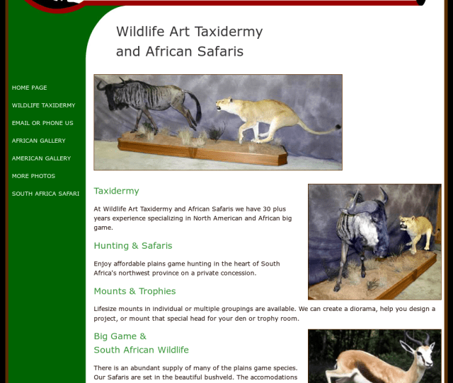 Wildlife Art Taxidermy Competitors Revenue And Employees Owler Company Profile