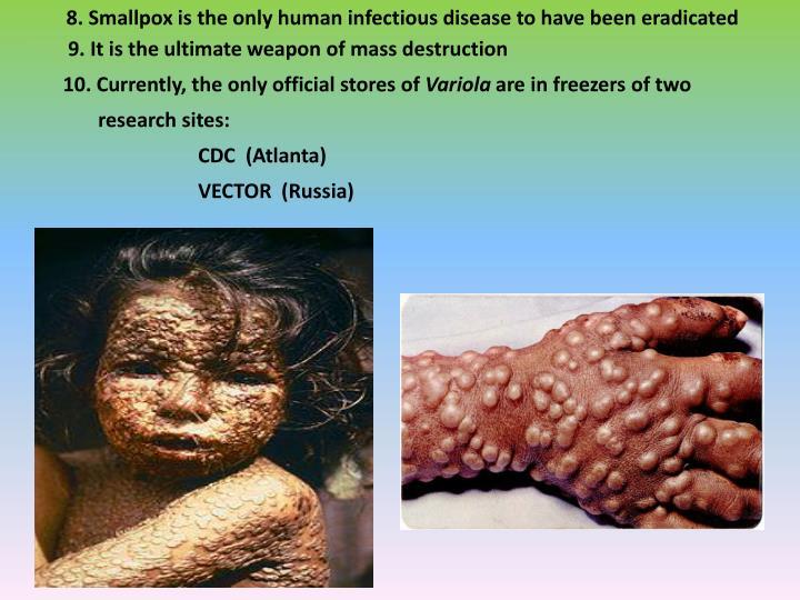 PPT - The Viruses PowerPoint Presentation - ID:3687659