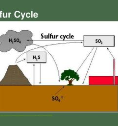 sulfur cycle http www wwnorton com college biology discoverbio4 animations main aspx chno ch37a02 [ 1024 x 768 Pixel ]