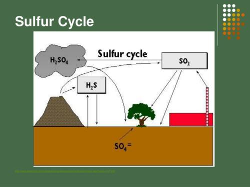 small resolution of sulfur cycle http www wwnorton com college biology discoverbio4 animations main aspx chno ch37a02
