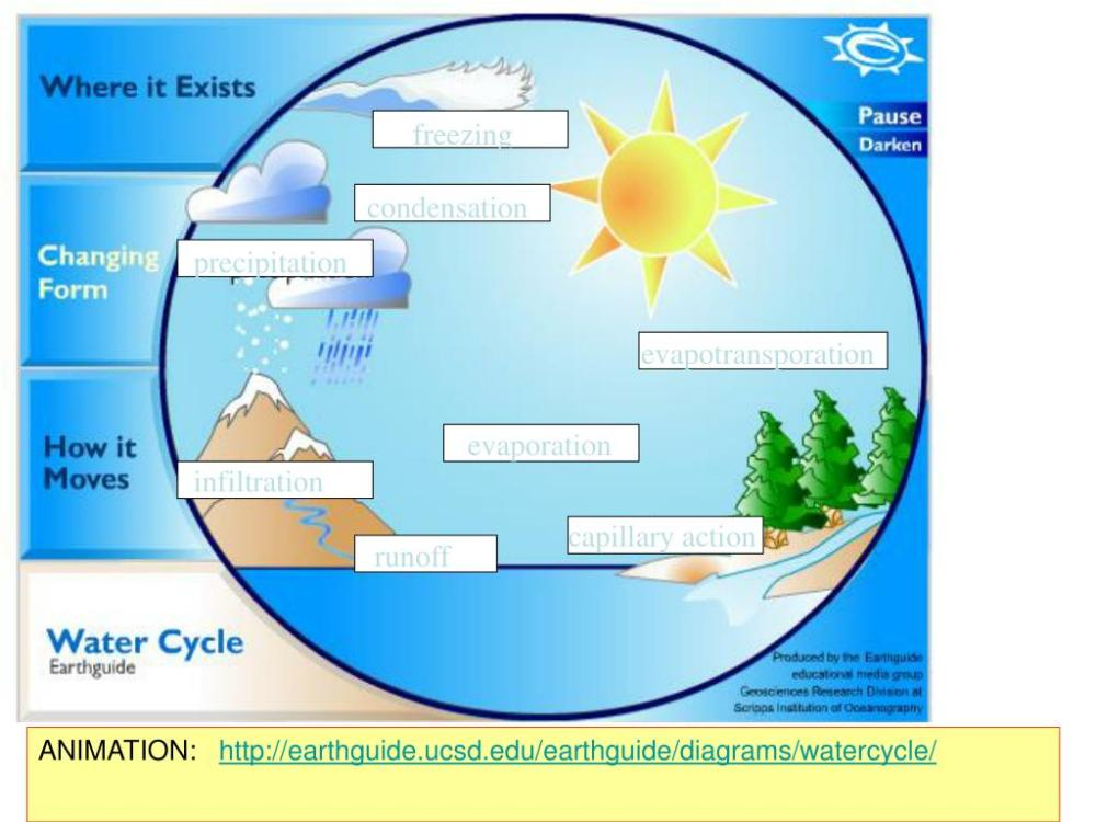 medium resolution of  precipitation evapotransporation evaporation infiltration capillary action runoff animation http earthguide ucsd edu earthguide diagrams watercycle