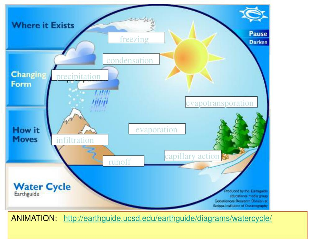 hight resolution of  precipitation evapotransporation evaporation infiltration capillary action runoff animation http earthguide ucsd edu earthguide diagrams watercycle