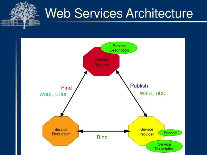 Web Application Security Issues