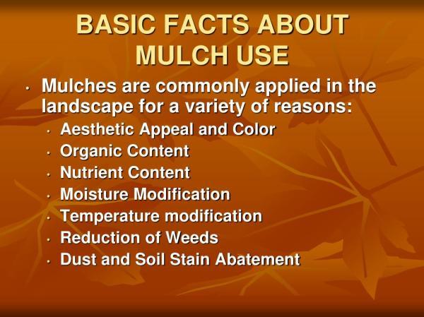 ppt - landscape mulch