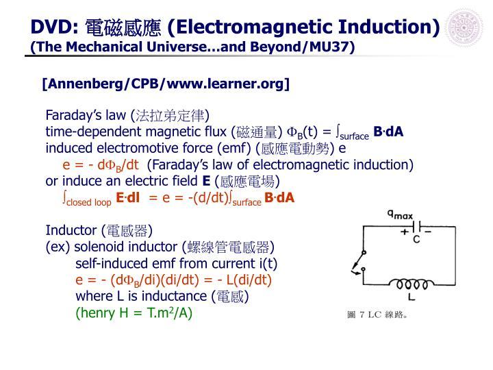 PPT - 實驗 4: 電流天平 ( 課本實驗 18) PowerPoint Presentation - ID:3922201
