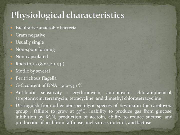 PPT - Erwinia rhapontici PowerPoint Presentation - ID:4055602