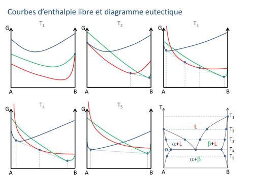 small resolution of courbes d enthalpie libre et diagramme eutectique