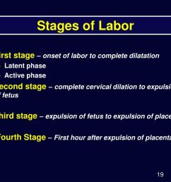 Stages Of Labor Worksheet   Printable Worksheets and Activities for  Teachers [ 768 x 1024 Pixel ]