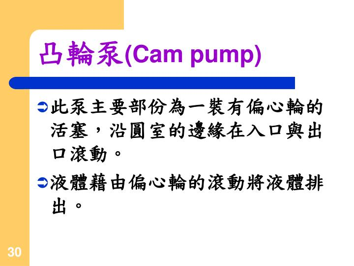 PPT - 排量式泵的介紹 PowerPoint Presentation - ID:4608360