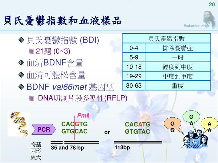 PPT - 腦源性神經滋養因子 BDNF 在淨化呼吸法抗憂鬱的角色 PowerPoint Presentation - ID:4646000