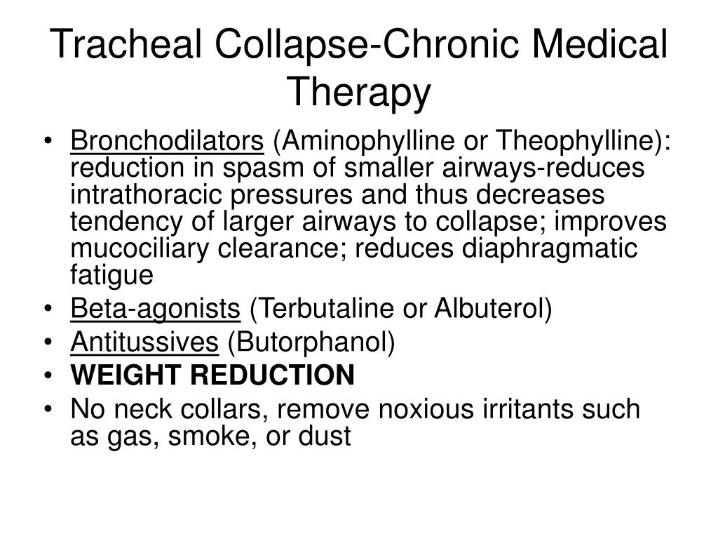 PPT - Tracheal Collapse PowerPoint Presentation. free download - ID:4802543