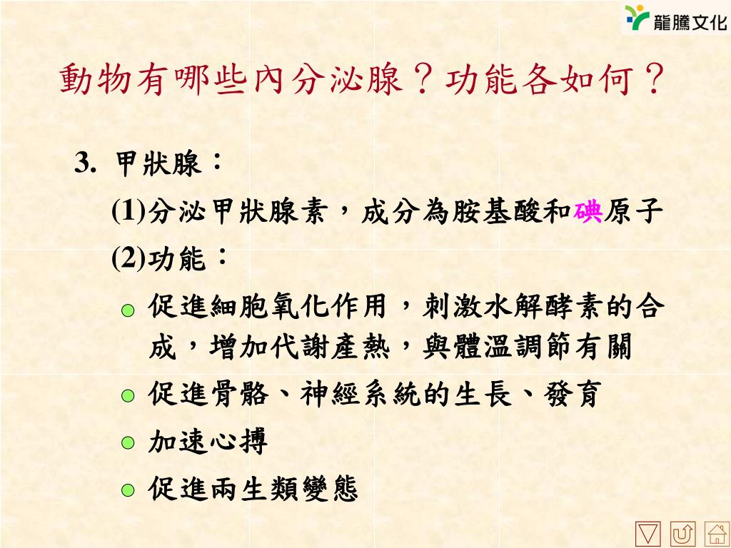 PPT - 第八章 激素與協調作用 PowerPoint Presentation, free download - ID:5132019