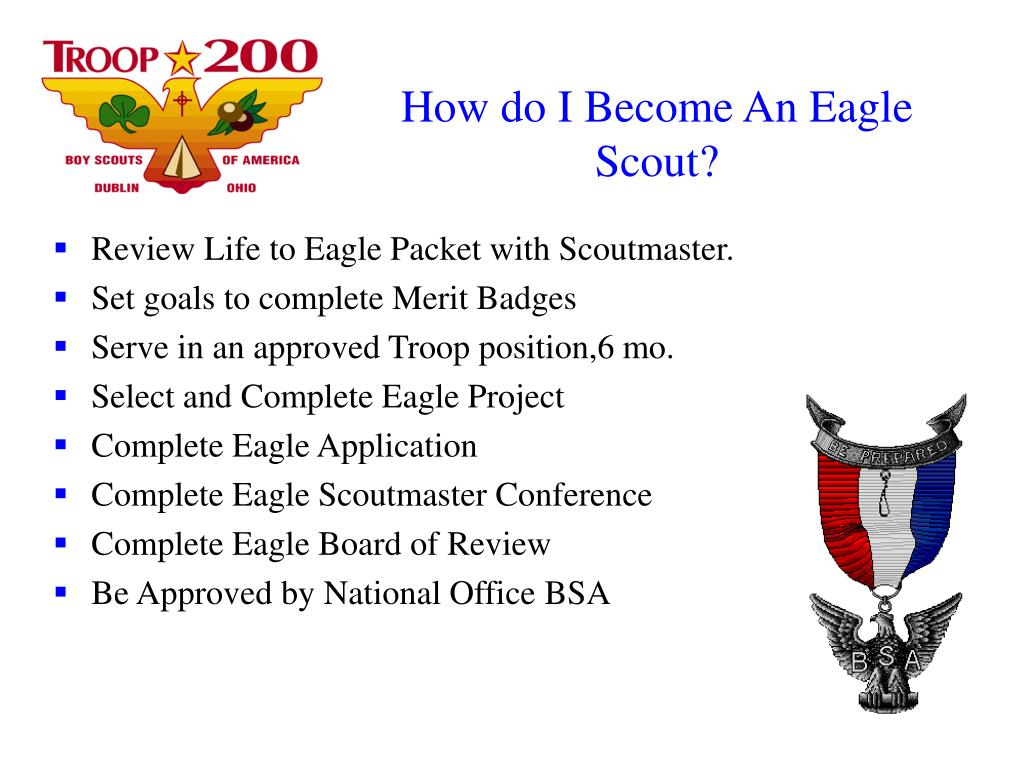 Eagle Scout Scoutmaster Conference Worksheet