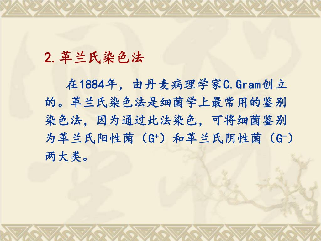 PPT - 細菌單染色及革蘭氏染色 PowerPoint Presentation. free download - ID:5525046