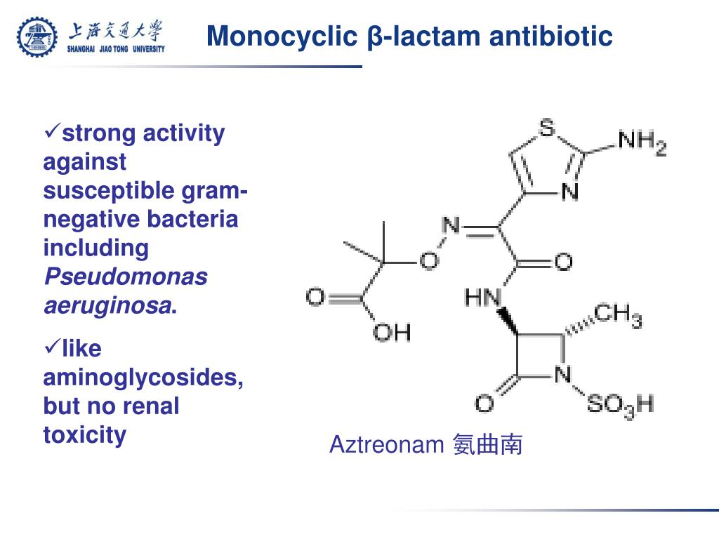 PPT - β -lactam antibiotics ( β - 內酰胺類抗生素) PowerPoint Presentation - ID:5701105