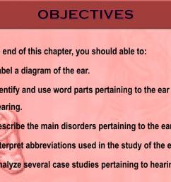 objectives at the end of this chapter you should able to label a diagram of the ear identify and use word parts pertaining to the ear and hearing  [ 1024 x 768 Pixel ]