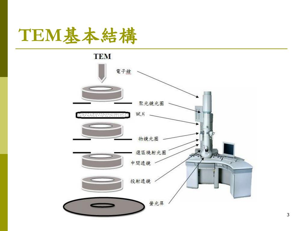 PPT - TEM 穿透式電子顯微鏡 (Transmission Electron Microscope) PowerPoint Presentation - ID:6387875