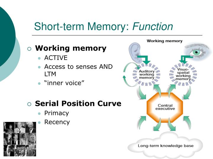 PPT - Persisted Learning: Memory PowerPoint Presentation ...