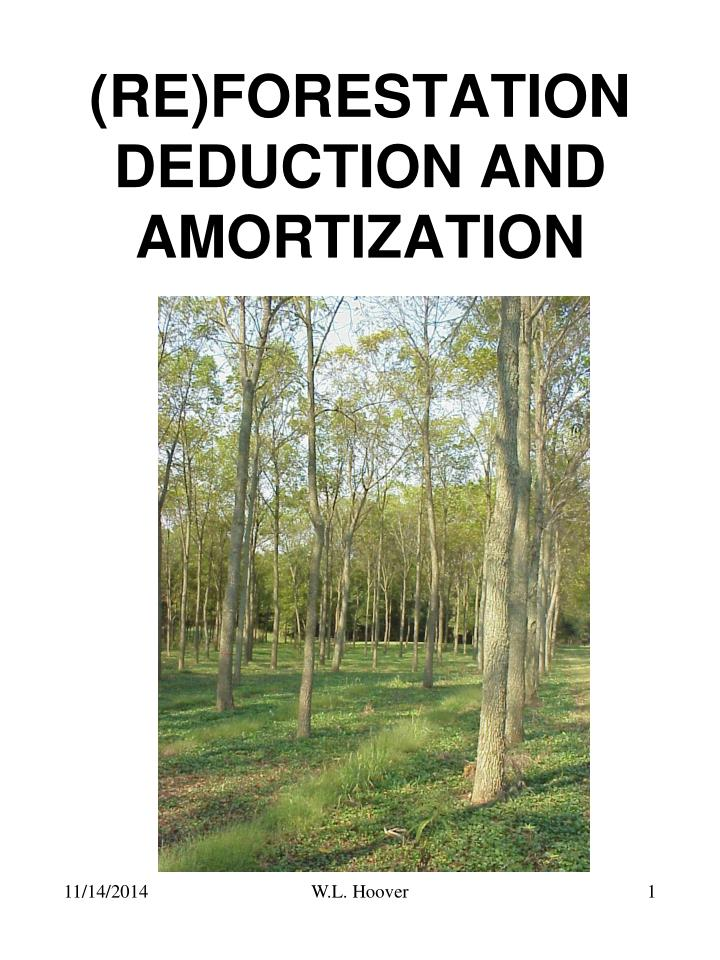 Proposition de projet pretty stars. Ppt Re Forestation Deduction And Amortization Powerpoint Presentation Id 6616586