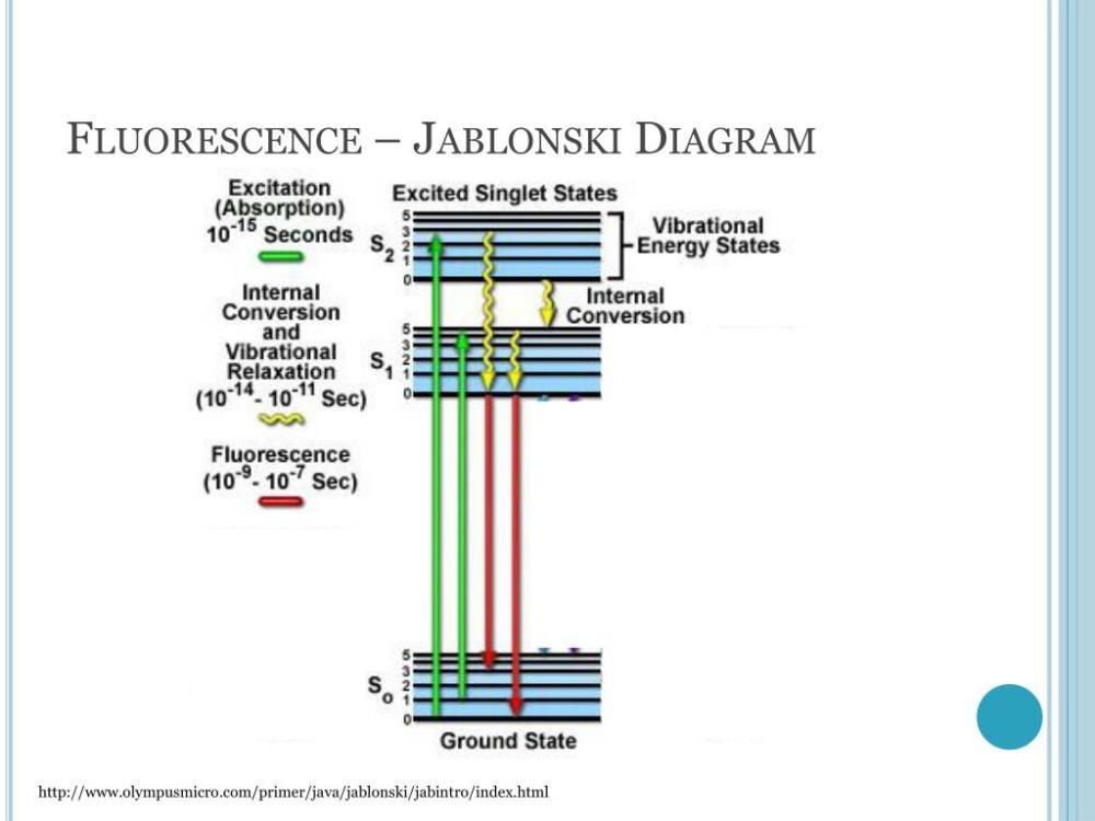 medium resolution of fluorescence jablonski diagram