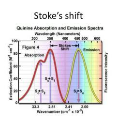this energy shift is called stoke s shift usually shown in diagram by wavelength or wavenumber difference q1 and q0 are energies of vibration taken by  [ 1024 x 768 Pixel ]