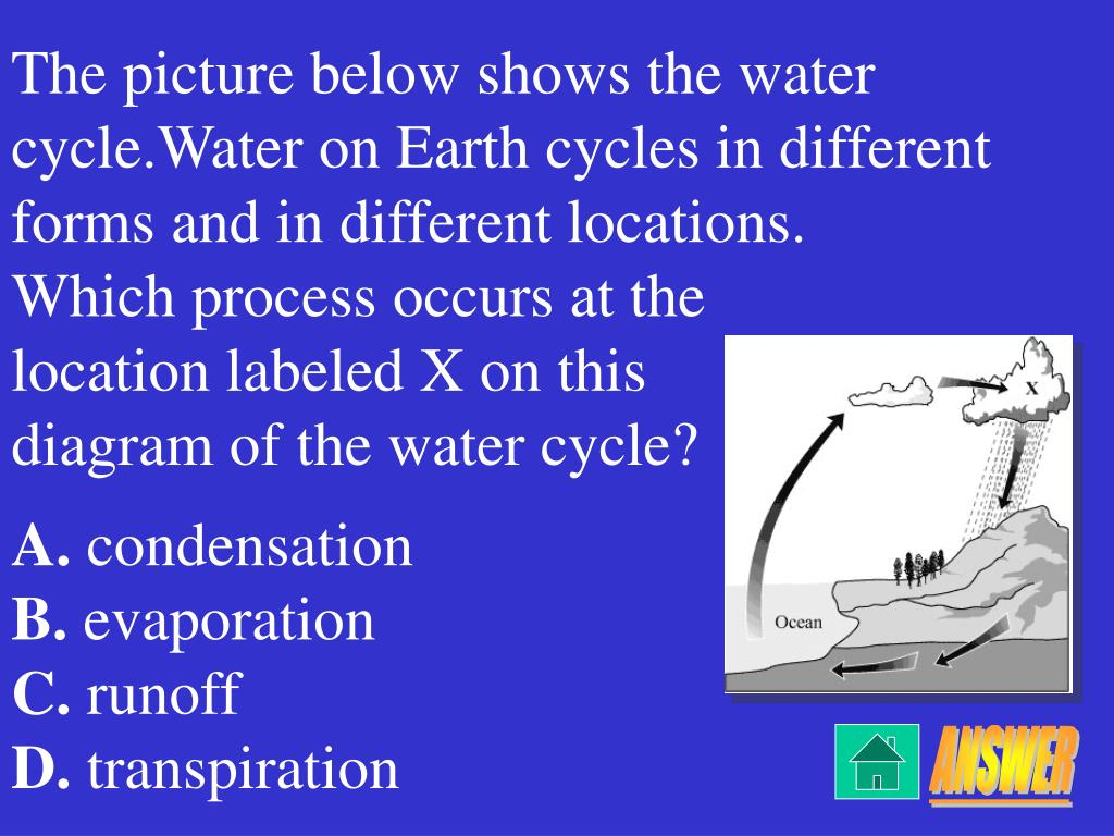 hight resolution of which process occurs at the location labeled x on this diagram of the water cycle a condensation b evaporation c runoff d transpiration answer