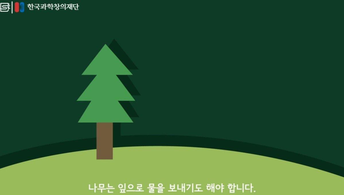 20200808_174053.jpg 초딩도 이해하는 태양광 때문에 잘린 나무가 하는일.jpg