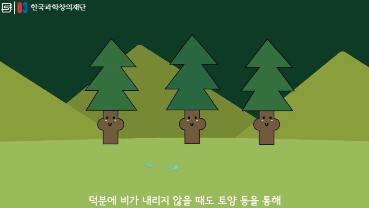 20200808_174006.jpg 초딩도 이해하는 태양광 때문에 잘린 나무가 하는일.jpg