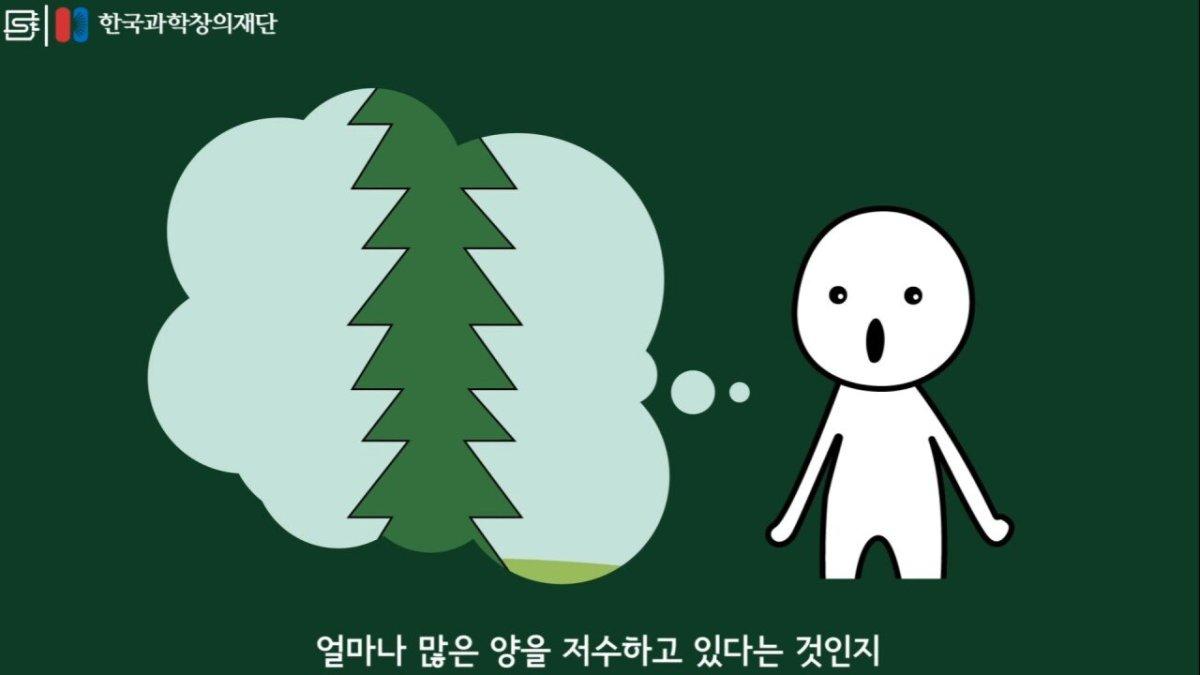 20200808_174158.jpg 초딩도 이해하는 태양광 때문에 잘린 나무가 하는일.jpg